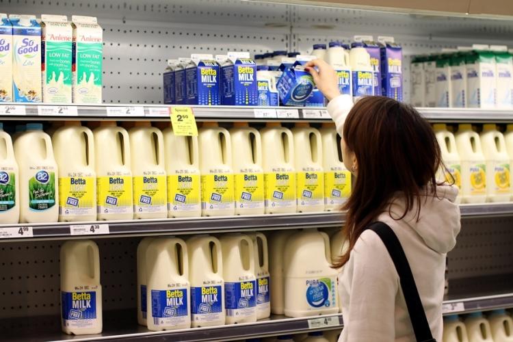 香港也有的Pura澳洲牛奶