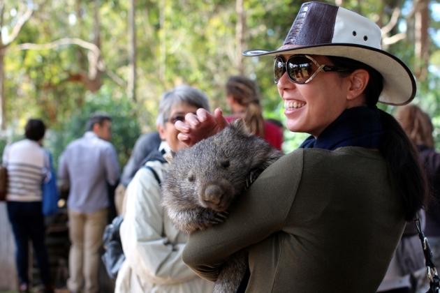 每天的特定時間(11 am)會有導賞團,由導賞人員帶領參觀。這裡的重點是可以抱Wombat