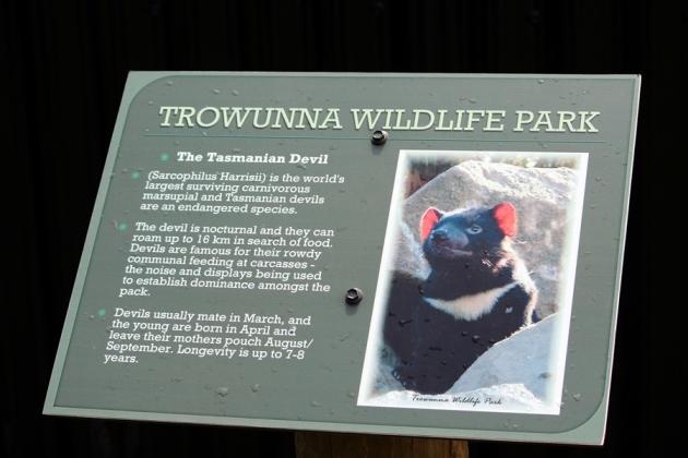 再走五分鐘,就到Trowunna Wildlife Park
