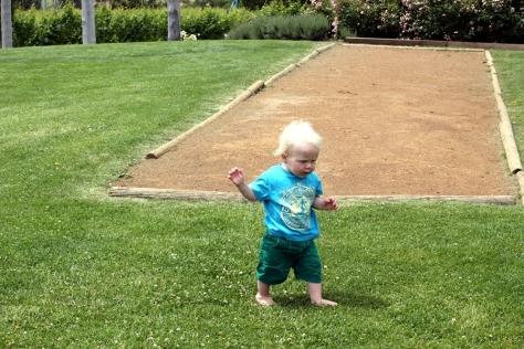 有小朋友在走來走去,真恨不得香港有一大片草地