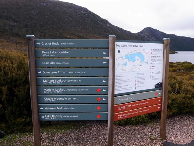 從Dove Lake可以走Dove Lake Circuit,也可以走到Marion Lookout去看Cradle Mountain