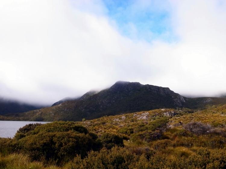 高地和山上天氣通常都是變化得很快,很可惜未能走到marion lookout去看看cradle mountain的全境