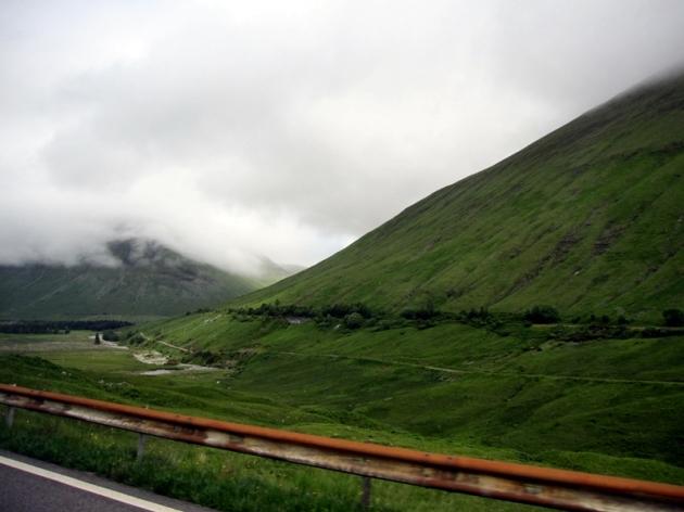 一路沿途的風景,四處都綠悠悠